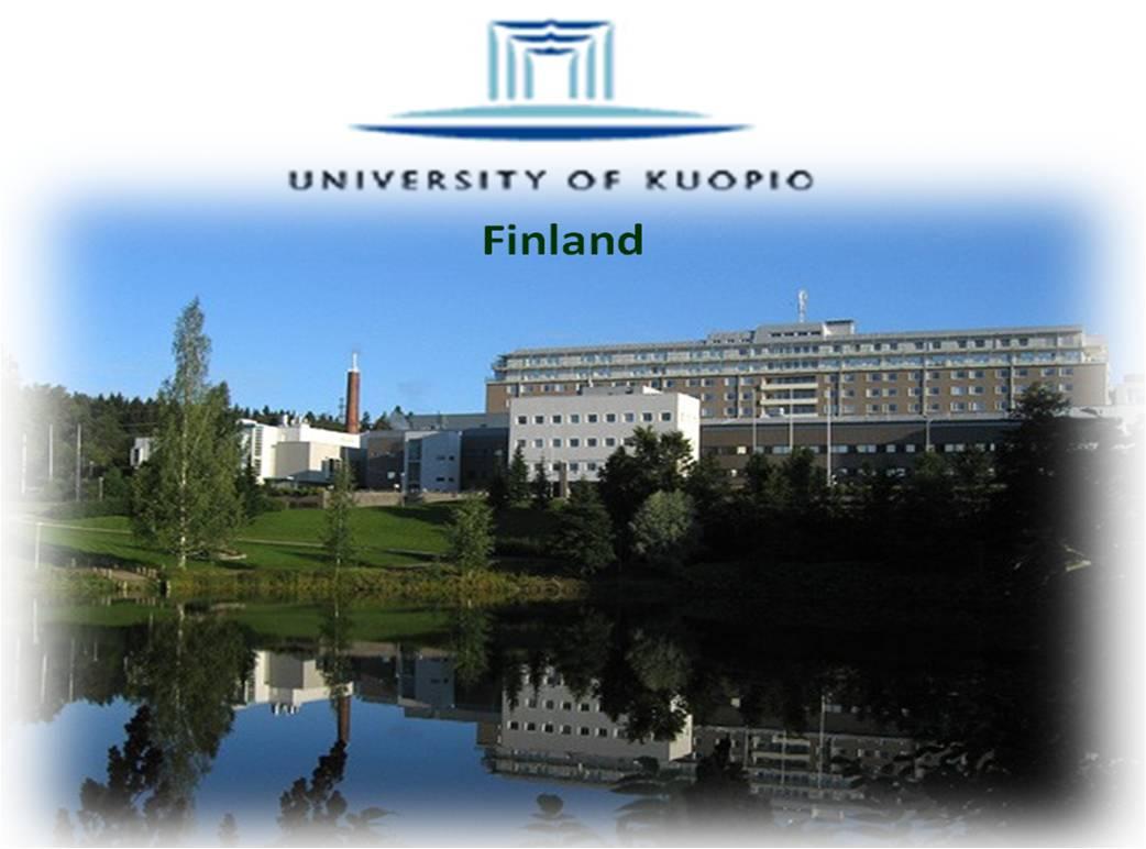 kuopio university