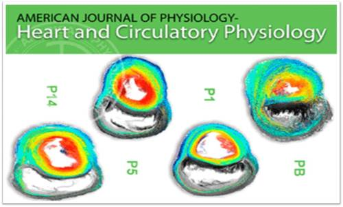 americal  journal of physiology