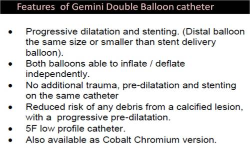 GEMINI DOUBLE BALLON STENT ACCURAMED  3