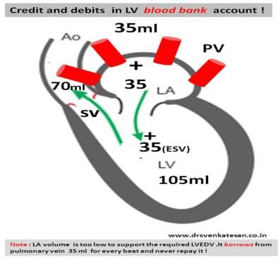 lvedv lvesv stroke volume wiggers cycle left atrial volume pressure volume loop residual diastasis