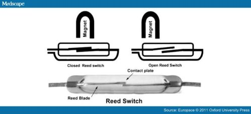 magnet rate reed switch