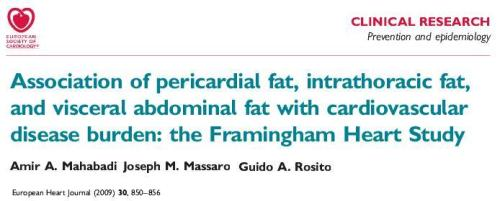 how to measure epicardial fat framingham study