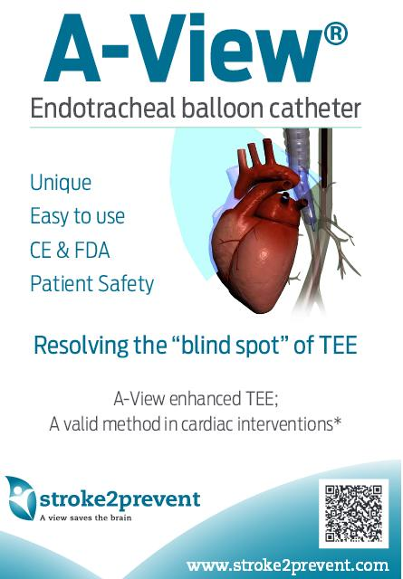 a view endo tracheal balloon catheter how to overcome the aortic blind spot in tee